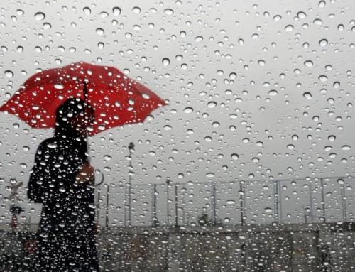 AVISO: Cancelamos por lluvia!